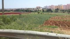 terrenos,casas  e edifícios.