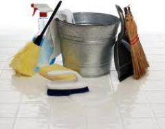 Limpesa domestica