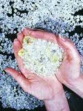 Processamento de diamantes